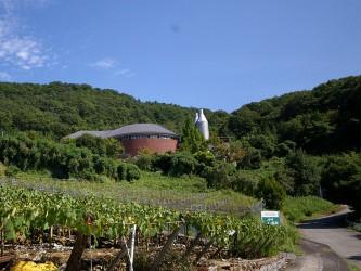 シャトー酒折ワイナリー(株)/Chateau Sakaori Winery