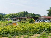 ふくしま農家の夢ワイン(株)/ふくしま農家の夢ワイン