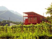 (株)八剣山さっぽろ地ワイン研究所/八剣山ワイナリー